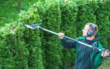 Chesham hedge trimming costs