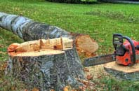free Chesham tree felling quotes