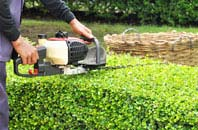 Chesham hedge trimming services