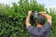 free Chesham hedge trimming quotes